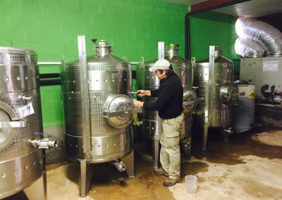 2015-wine-making-1